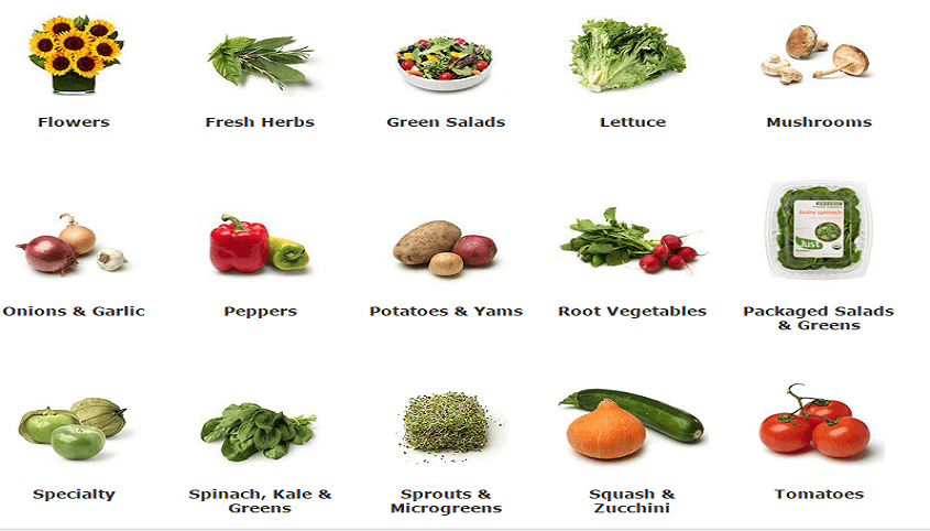 fruits and vegetables for sale online