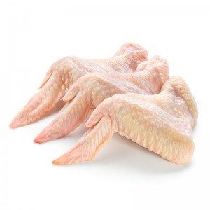 Chicken Wing Stick Suppliers